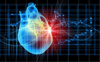 Angina is common, but frequently missed and undertreated